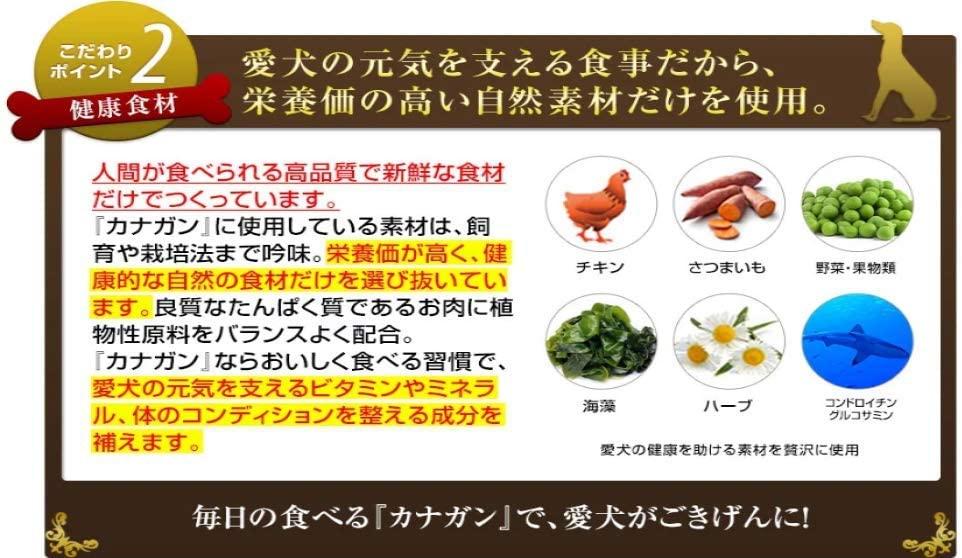 CANAGAN(カナガン) ドッグフード チキンの商品画像6