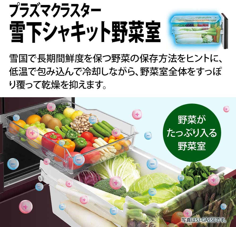 SHARP(シャープ)冷蔵庫 SJ-AF50Fの商品画像5