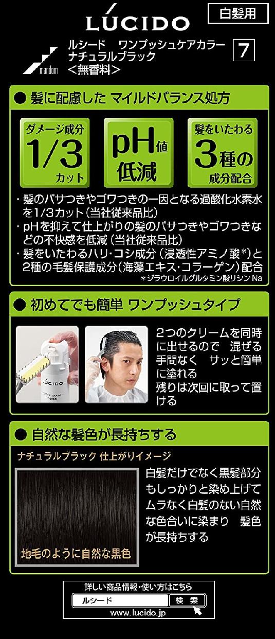 LUCIDO(ルシード)ワンプッシュケアカラーの商品画像6