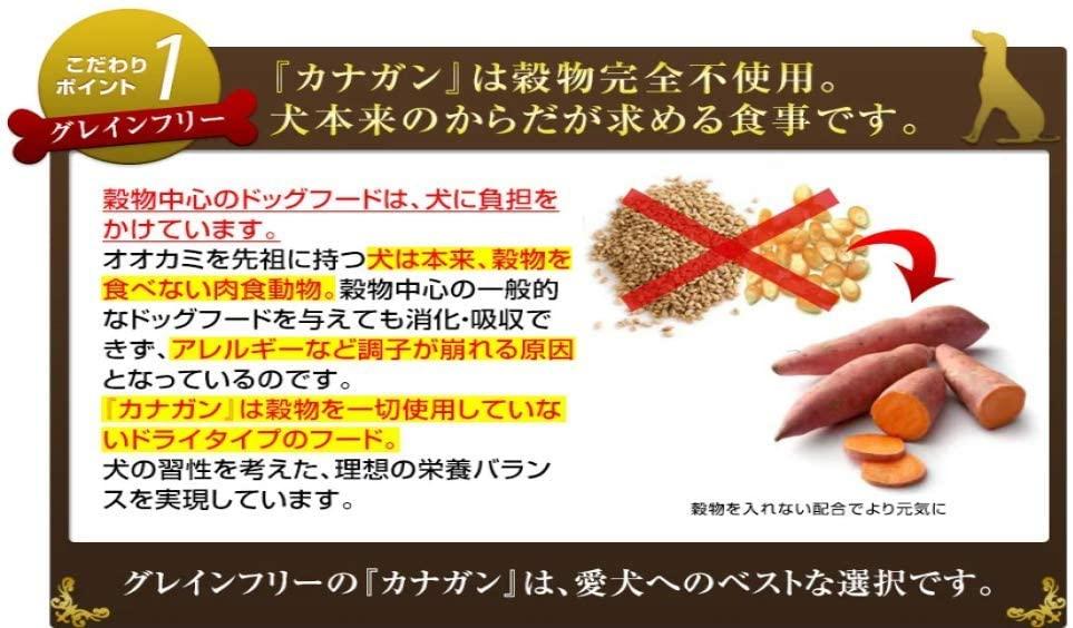 CANAGAN(カナガン) ドッグフード チキンの商品画像5
