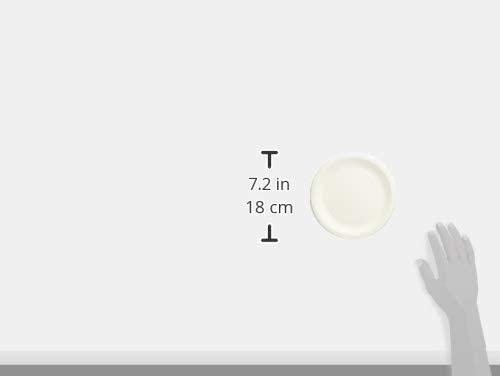 ペーパーウェア ナチュラルパルプ プレート 17cm 100P 厚手タイプの商品画像3