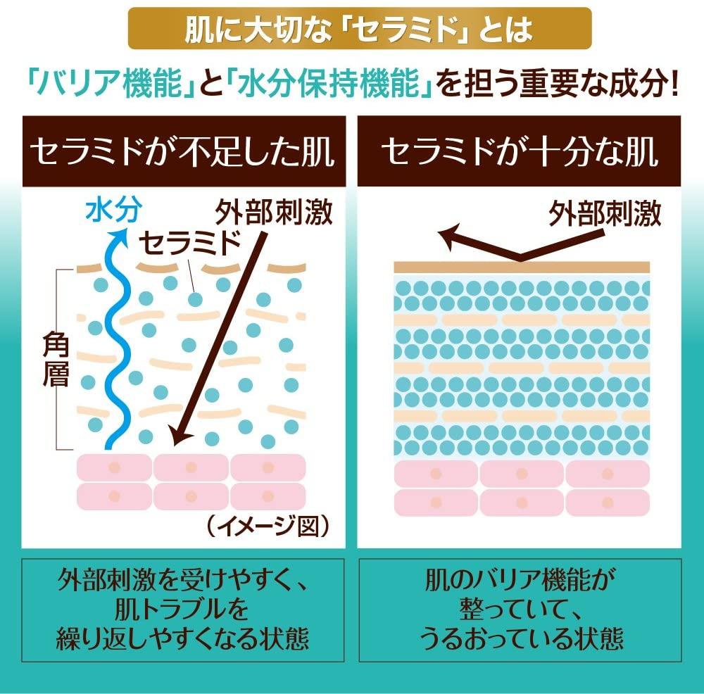 CareCera(ケアセラ)泡の高保湿ボディウォッシュの商品画像5