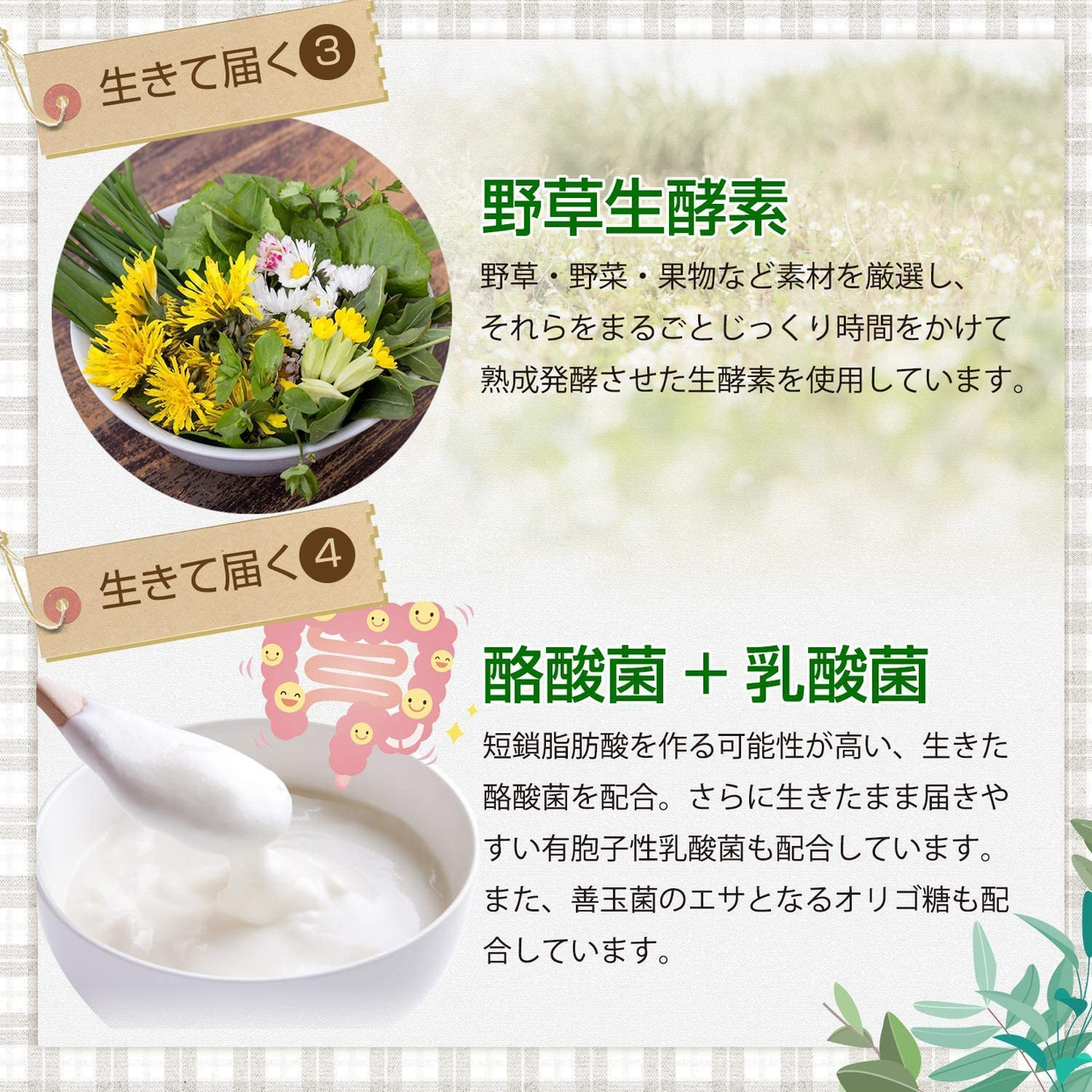 協和食研 麹とコンブチャの生酵素の商品画像5