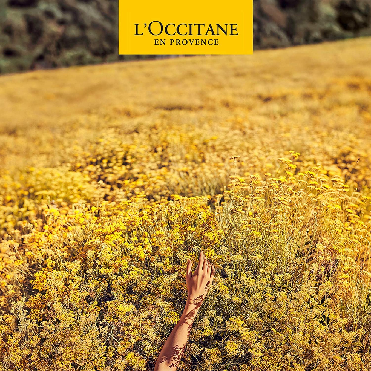 L'OCCITANE(ロクシタン) ファイブハーブス リペアリングシャンプーの商品画像8