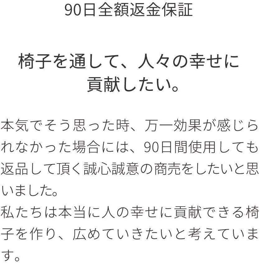 Sakamoto house(サカモトハウス) バランスチェア・イージーの商品画像9