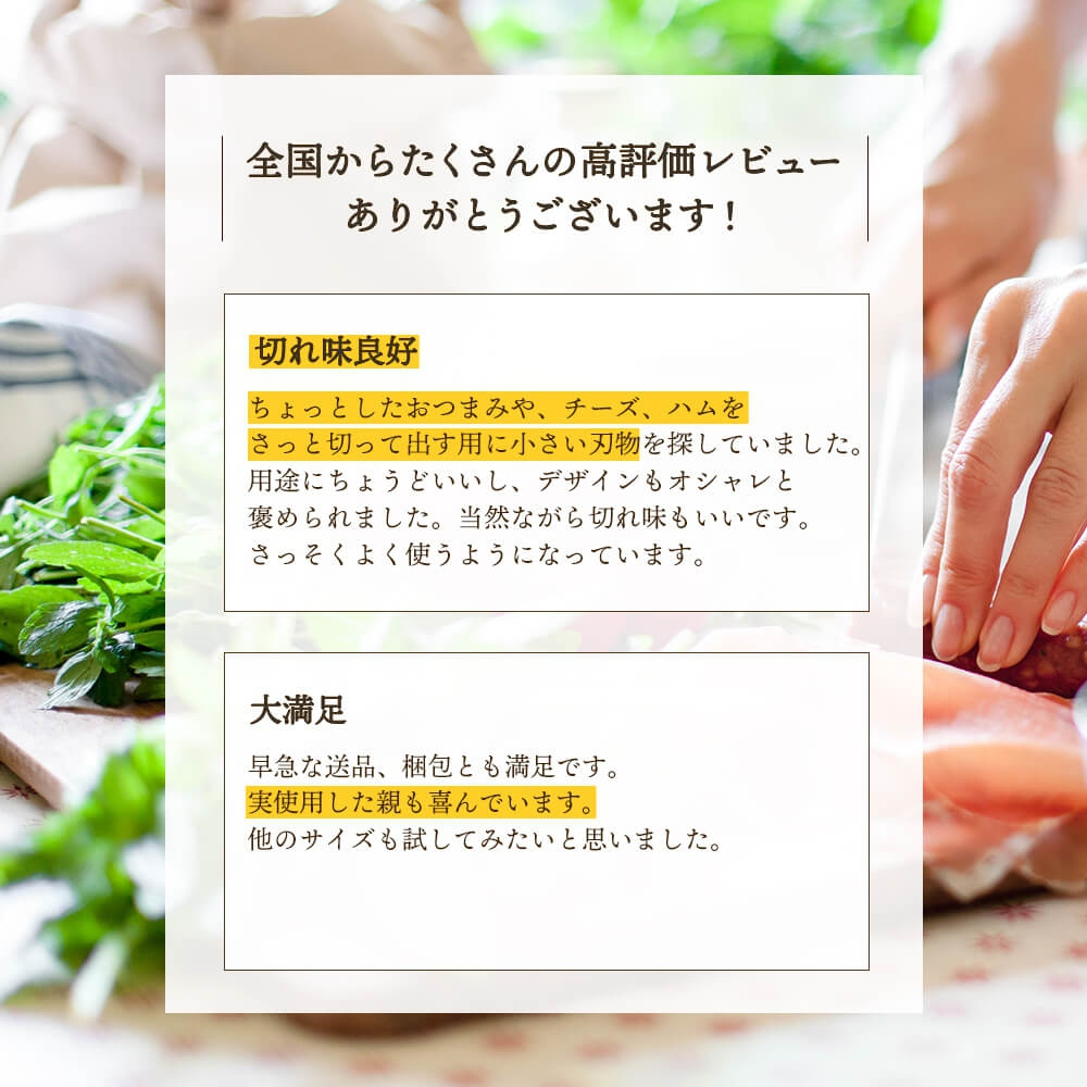 ISSIKI(いっしき) Cutlery ペティナイフ ステンレス 120mmの商品画像4