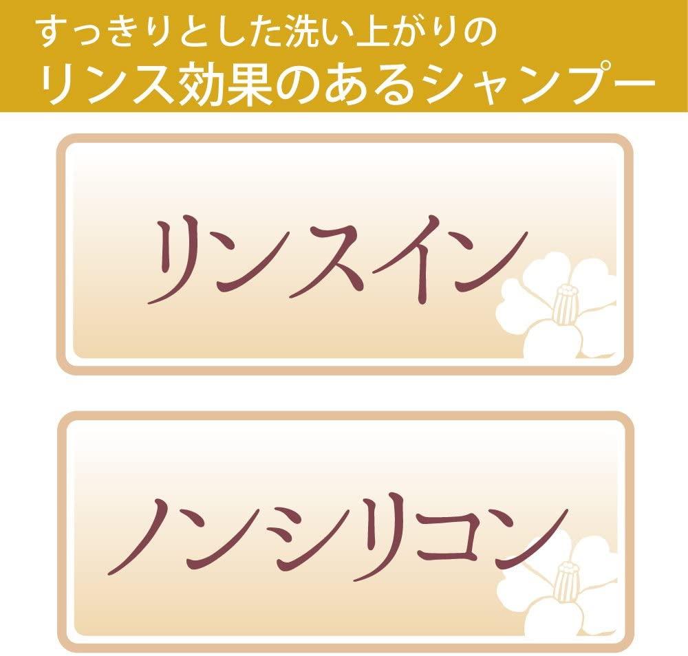 大島椿(オオシマツバキ)オイルシャンプーの商品画像3