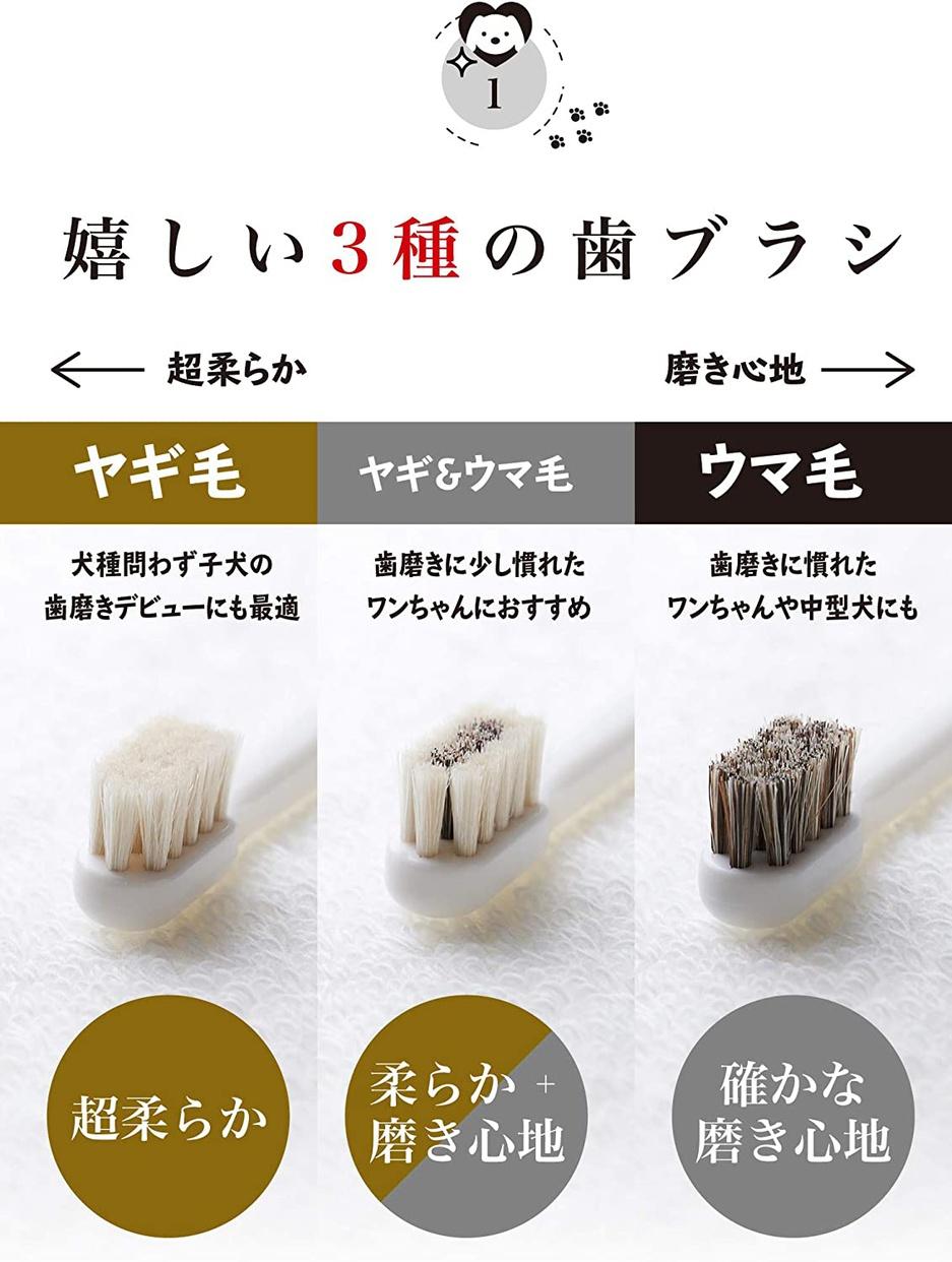 MIGAKENDE(ミガケンデ) 柔らかい天然毛歯ブラシの商品画像4