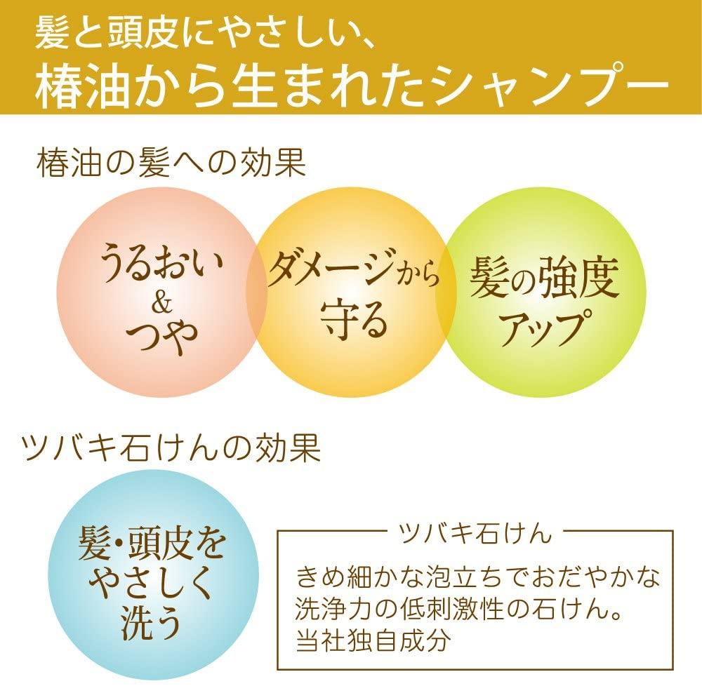 大島椿(オオシマツバキ)オイルシャンプーの商品画像4