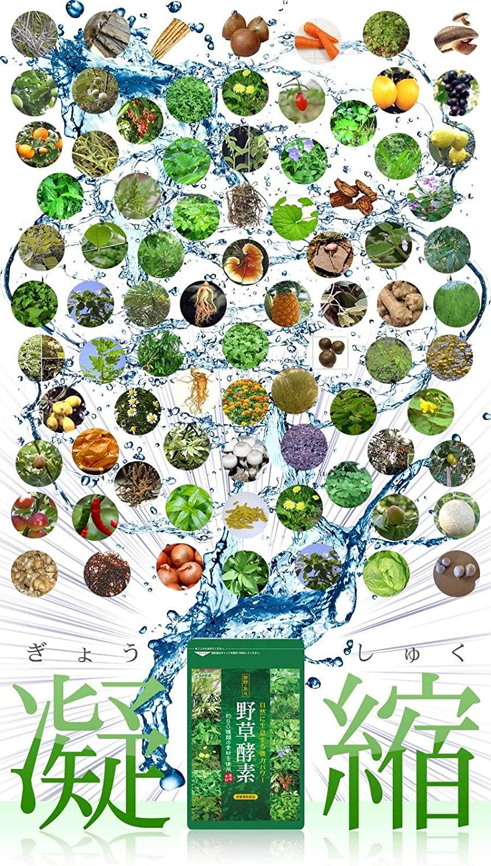 seedcoms(シードコムス) 野草酵素の商品画像4