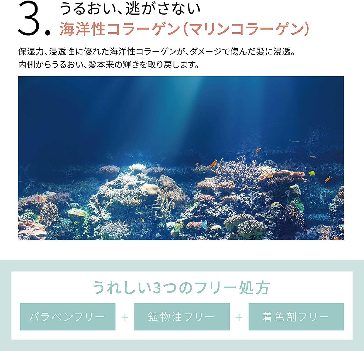 NALOW(ナロウ) ディープ モイスト シャンプーの商品画像5