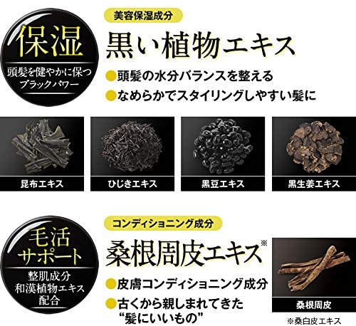 DHC(ディーエイチシー) ブラックコンディショニングシャンプーの商品画像3