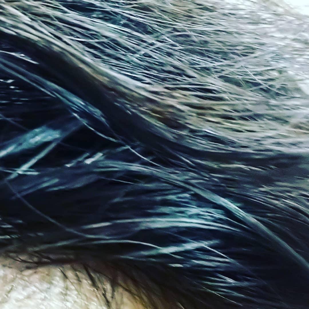 綺和美(KIWABI)ROOT VANISH By KAZUMI 白髪隠しカラーリングブラシを使ったティンカーベル0908さんのクチコミ画像3