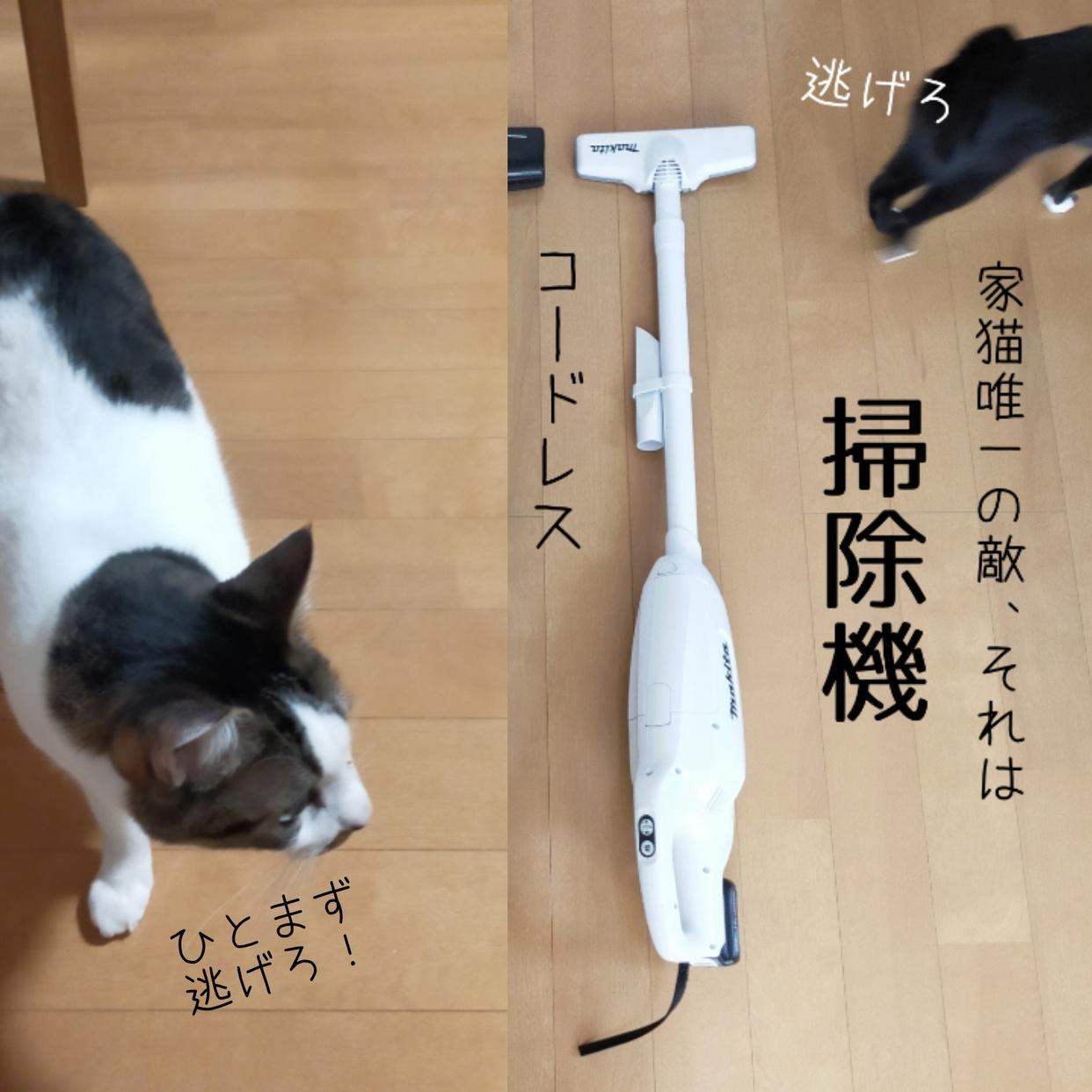 makita(マキタ)充電式クリーナ CL107FDSHWを使ったねこちえさんのクチコミ画像1