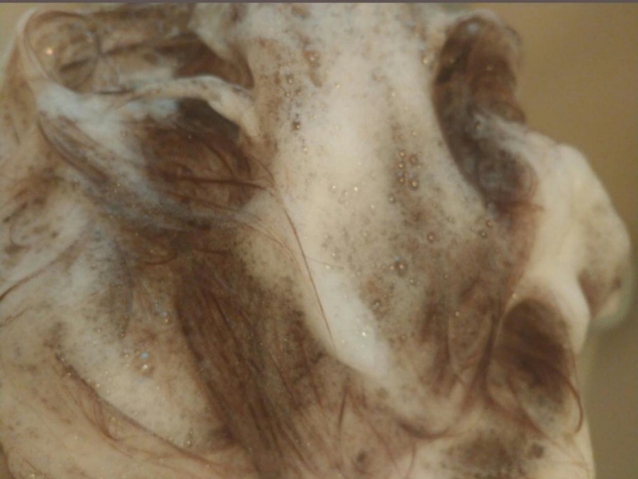 hms(フムス) シャンプー&トリートメント セットを使ったたまコングさんのクチコミ画像2