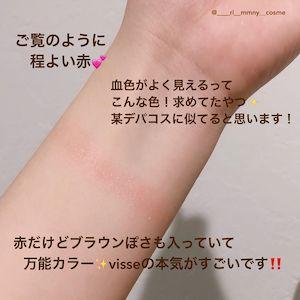 Visée(ヴィセ) リシェ フォギーオン チークス Nを使った田久保 里奈さんのクチコミ画像2