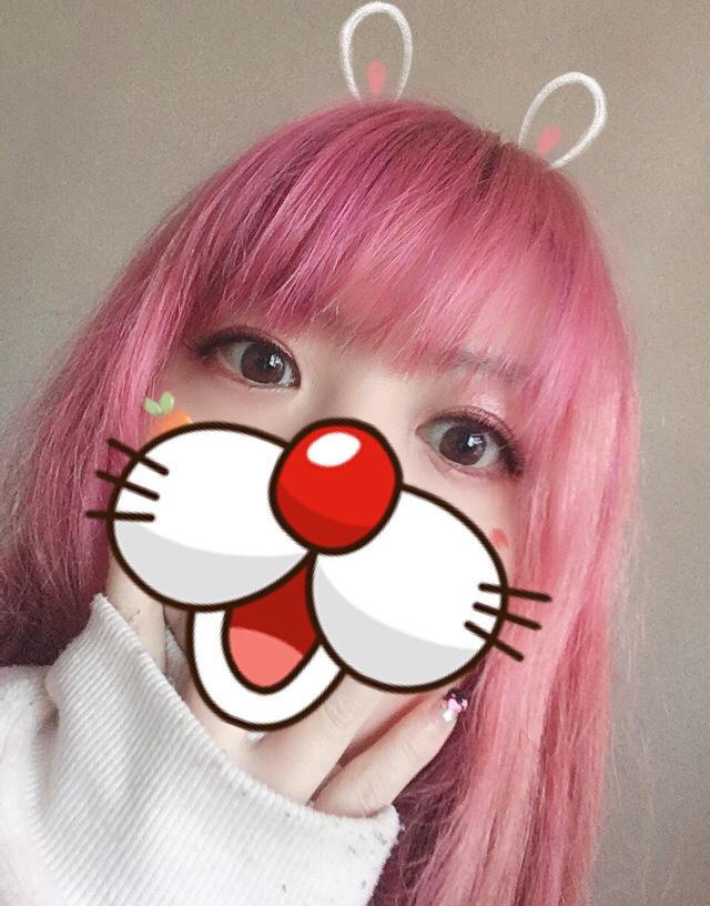NEKO☆mimi