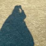 ひぃ / 女性のプロフィール画像
